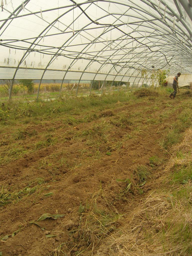 Préparation du sol du tunnel