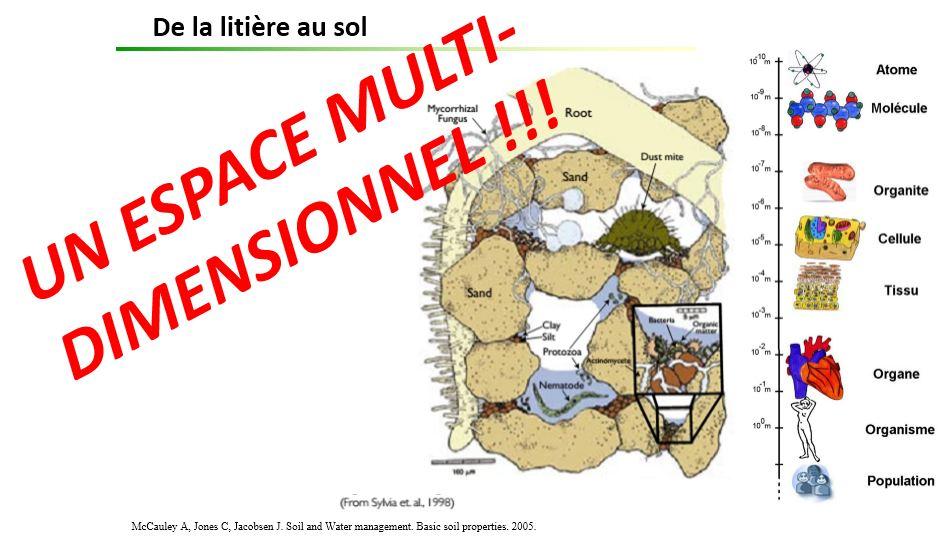 Espace multidimensionnel