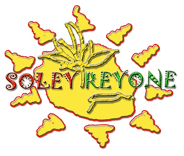 Logo soley reyone