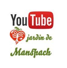 Chaîne YouTube MSV